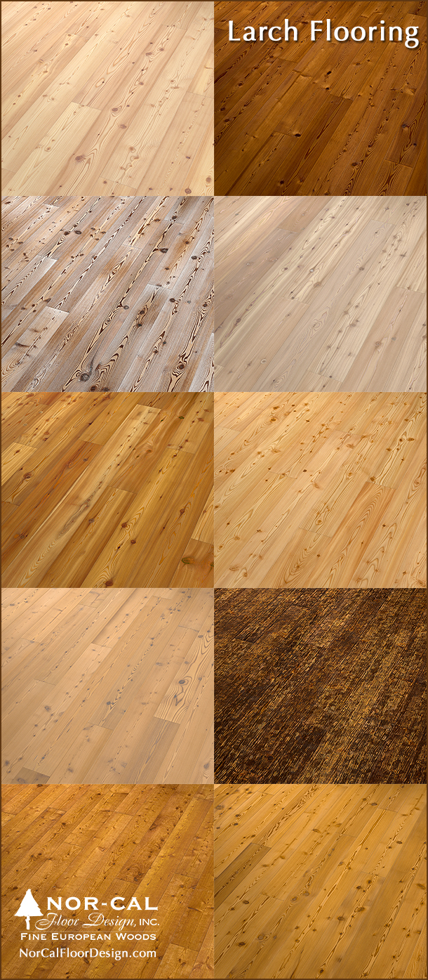 larch flooring options for warm undertones and for bright floors